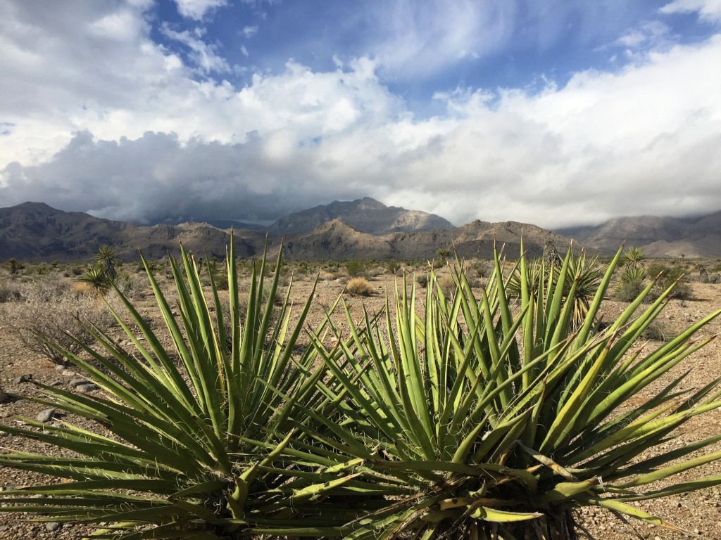 Mountains, Mojave, Art of Adventure, Photo of the Week